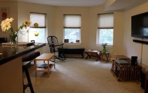 Cleveland Homes for Rent in Tremont living room