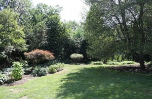 House for Rent in Cleveland Heights, Forest Hill backyard