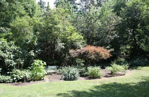 House for Rent in Cleveland Heights, Forest Hill beautiful yard