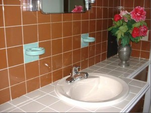 Homes for Rent Cleveland Heights Ohio, Forest Hilll sink