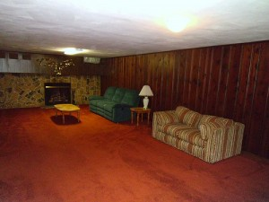Homes for Rent Cleveland Ohio on Fenley Rd basement