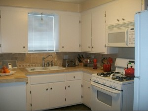 House for Rent in Cleveland on Hollister Rd kitchen